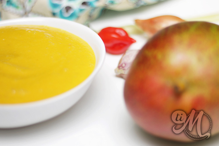 timolokoy-ketchup-mangue-citronnelle-07