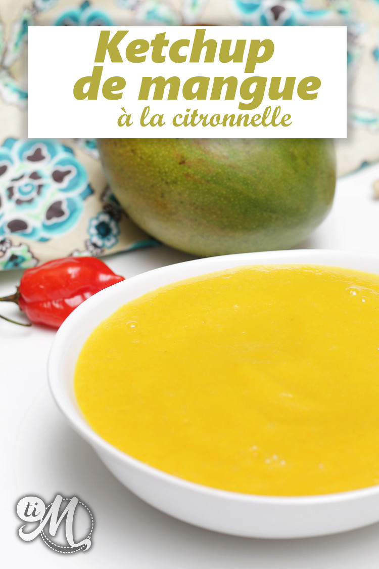 timolokoy-ketchup-mangue-citronnelle-12