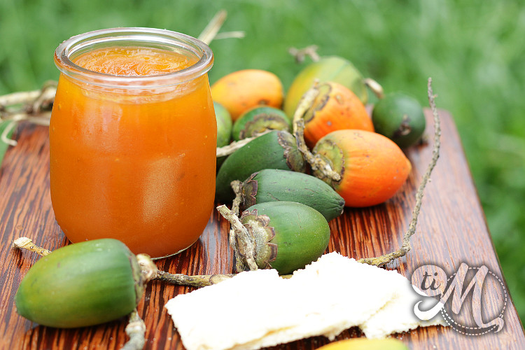 timolokoy-marmelade-parepous-14