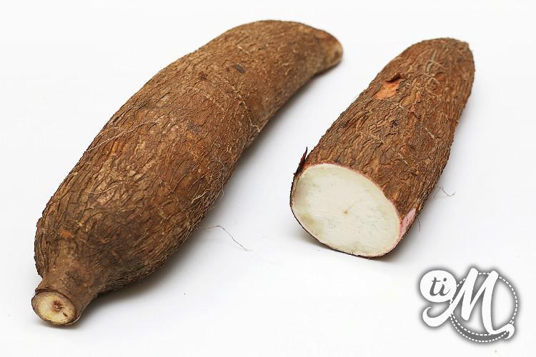 timolokoy-manioc-08