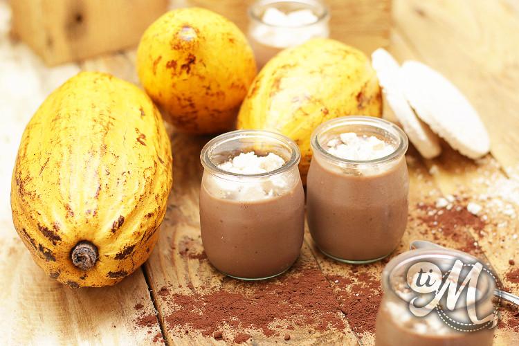 timolokoy-panna-cotta-chocolat-coco-sispa-09